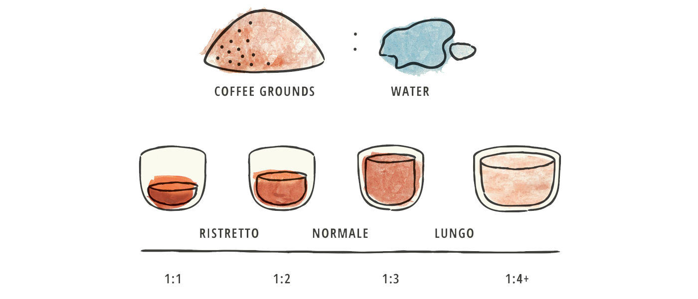 Brew Ratios Around The World La Marzocco Home