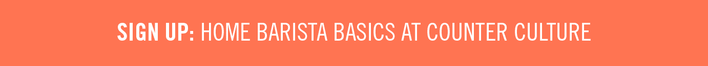 Barista Basics Sign Up Button CCC